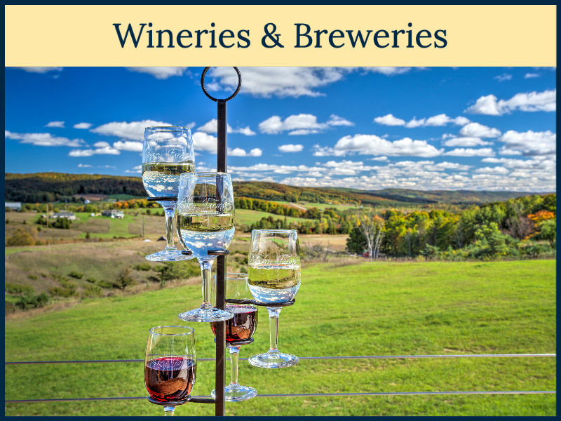 Petoskey Area Wineries & Breweries - Picture from Petoskey Farms